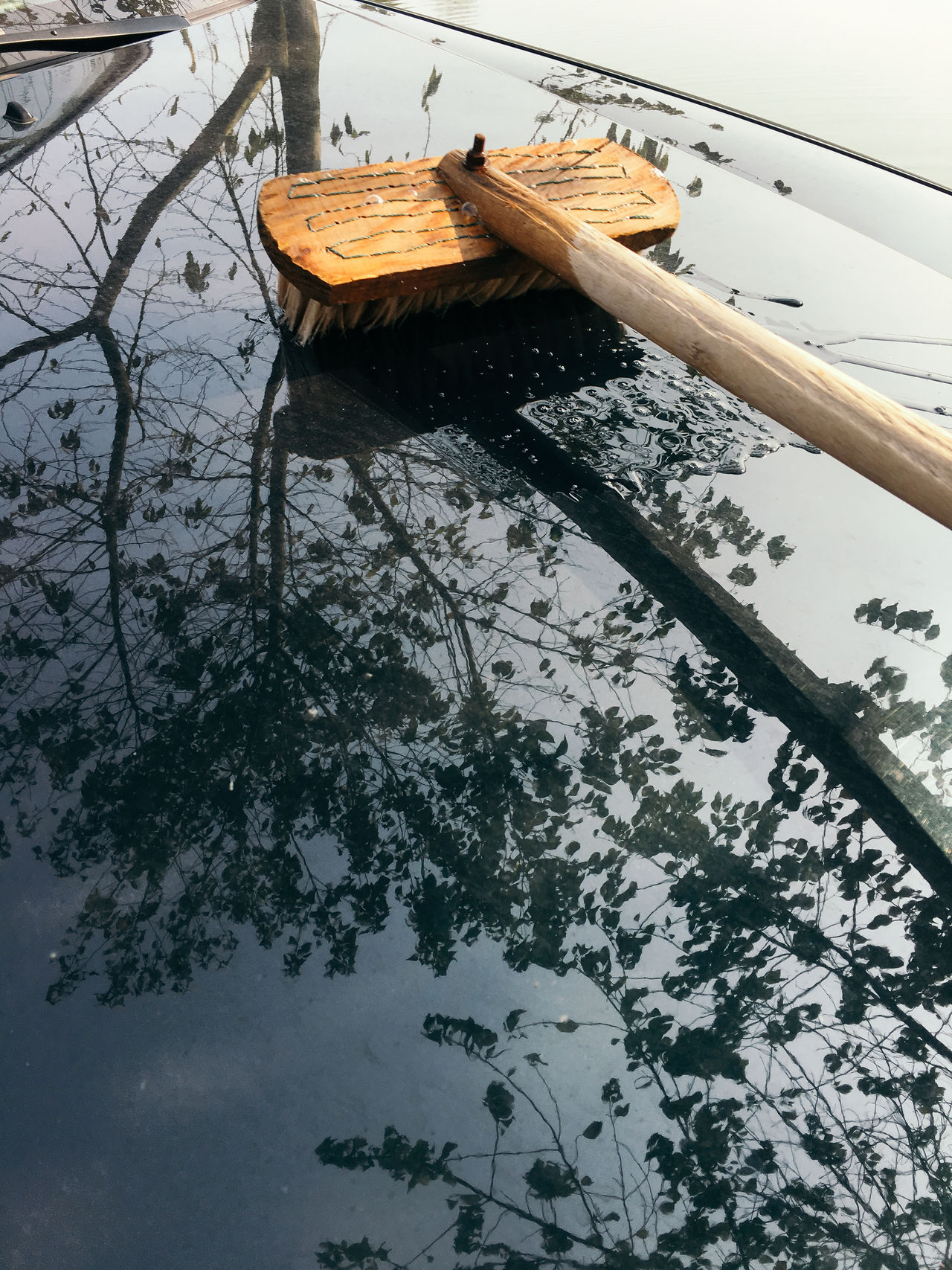 Brush Car Day Low Angle View Nature No People Outdoors Sky Tree Vehicle Cleaning Water