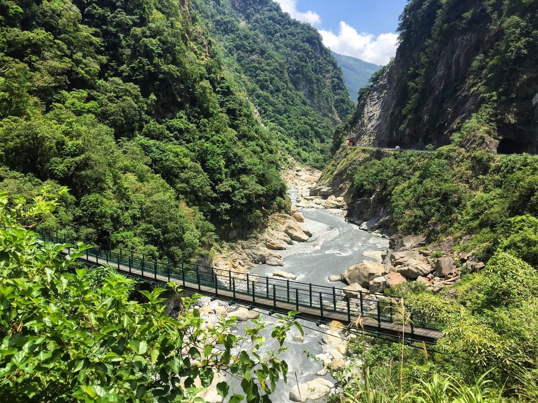 Taroko National Park Taroko Taroko Gorge Gorge Mountain Scenics River Nature Bridge Suspension Bridge Suspension Lush Foliage Mountain Range Hike