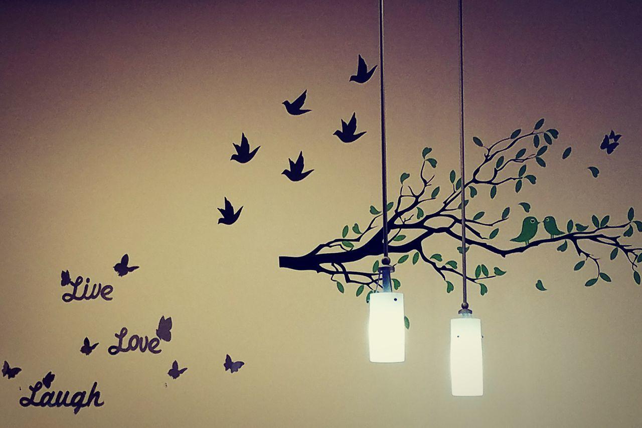 Livelaughlove♡ Wallpaper