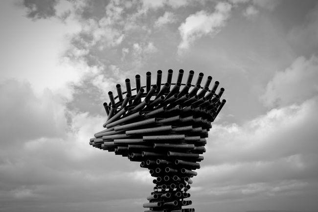 Singing Ringing Tree in Burnley, Lancashire Singingringingtree Burnley Landmark Sculpture Wind Sculptures Architecture Black And White The Architect - 2015 EyeEm Awards Amazing Architecture Shades Of Grey
