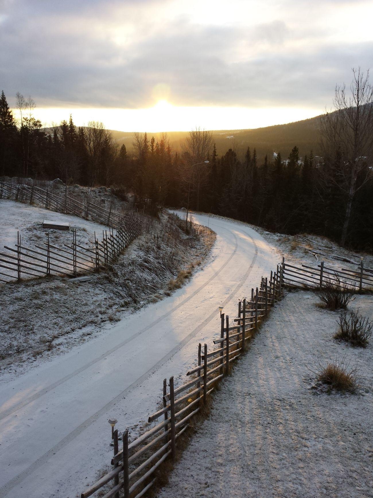 God Morning Snow Sun