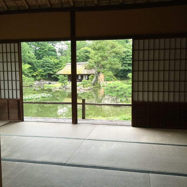 View From The Window... Japanese Garden Japanese Style Japanese Culture 桂離宮 Kyoto 京都 雅