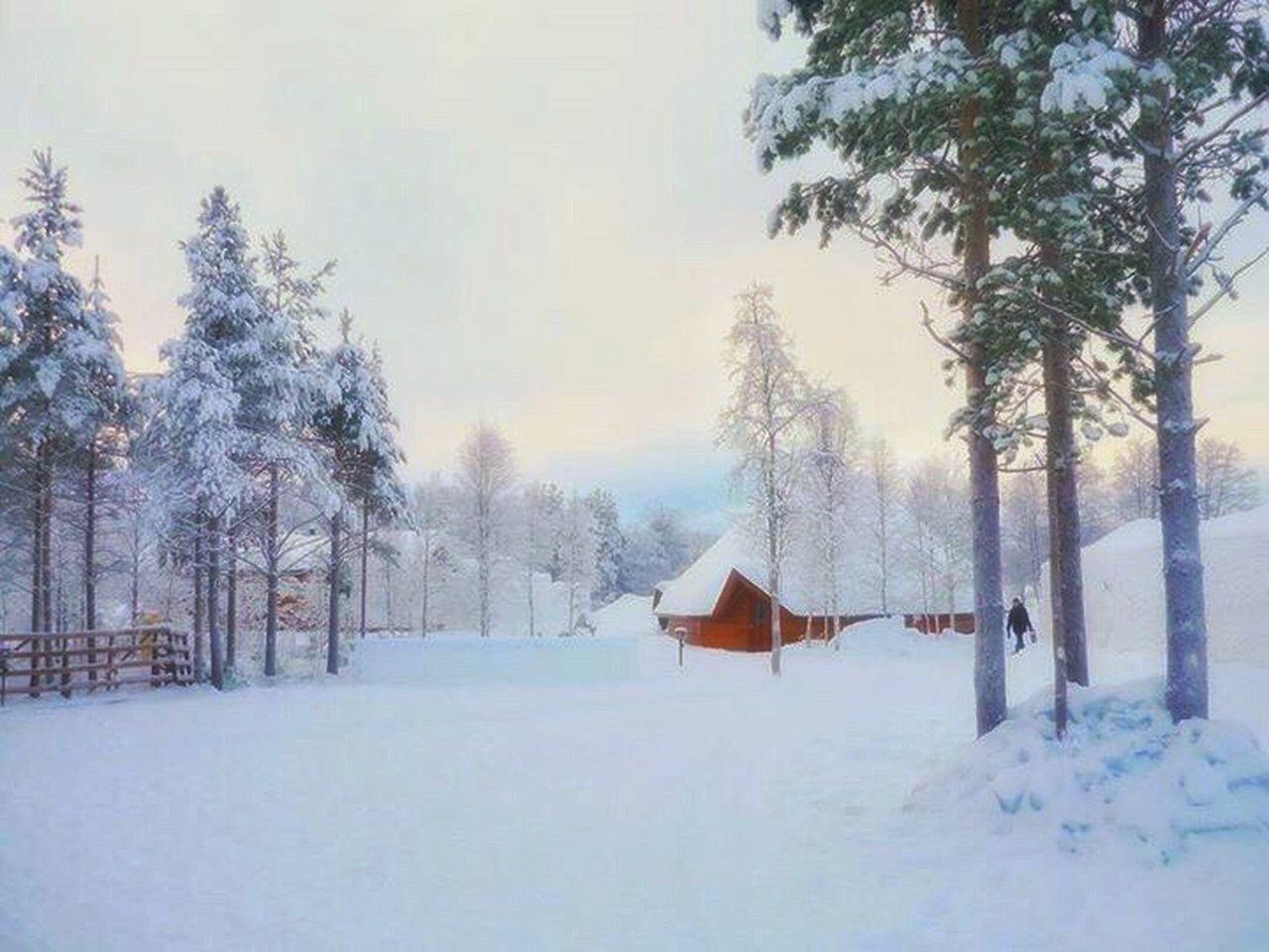 Pastel Power Rovaniemi, Finland Rovaniemi Sojourn IntotheArticCircle Aurora Chasing Winterwonderland Winterinlaplandfinland Winterinfinland2016 LLLimages Dreamylandscapes Christmaspostcards Showcase March IPS2016White