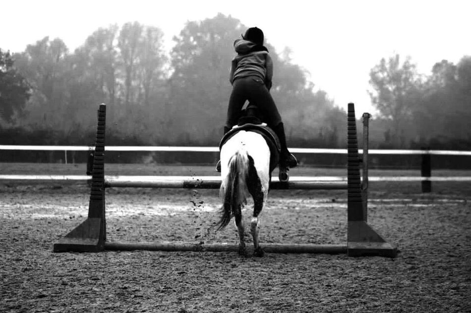 horse-riding passion