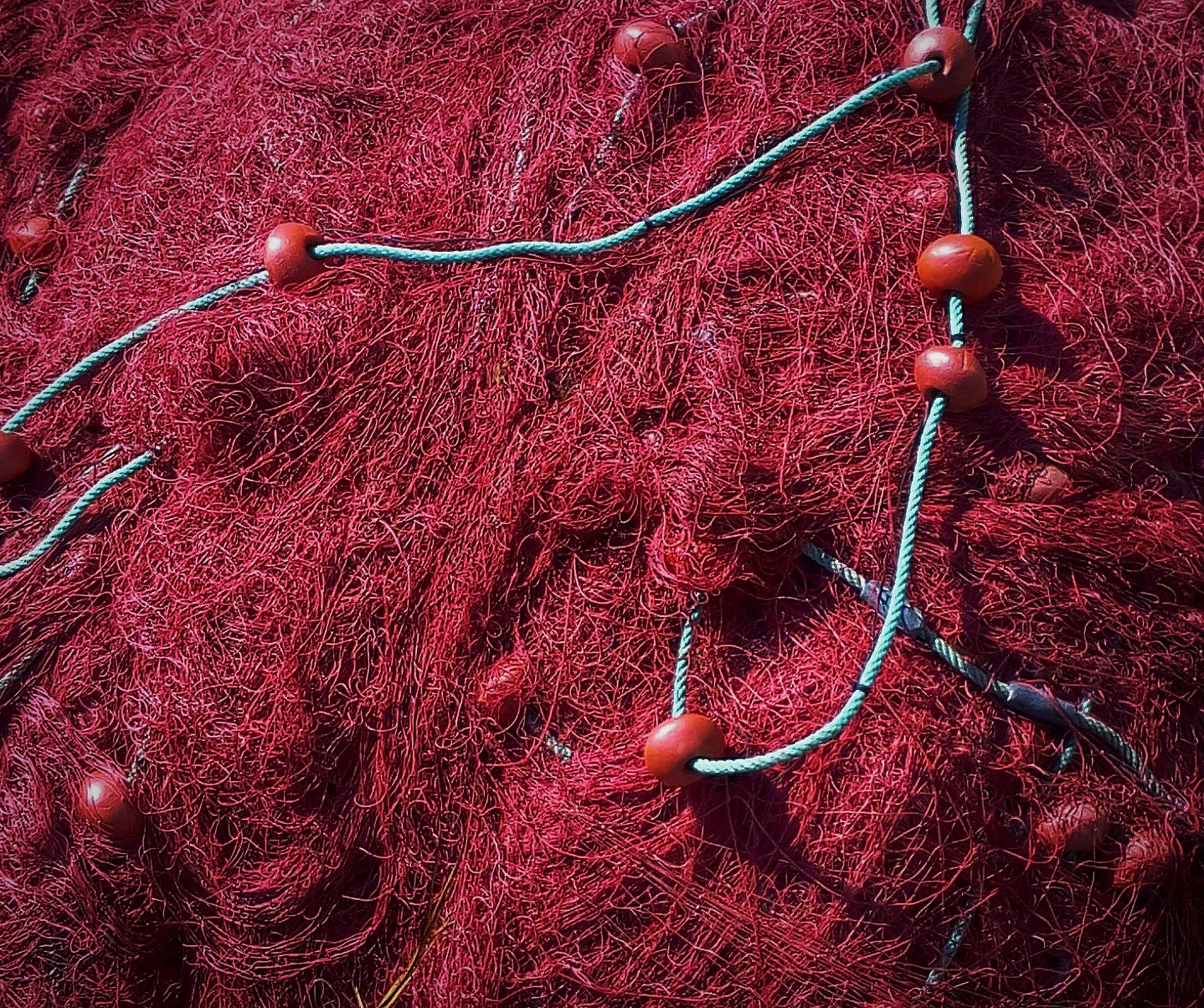 red, close-up, fruit, freshness, high angle view, no people, food and drink, hanging, nature, healthy eating, twig, stem, pink color, cherry, food, outdoors, ripe, detail, day, fragility