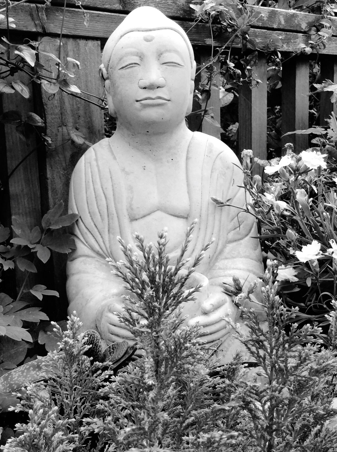 Shades Of Grey Relaxing Buddah Buddha Statue Buddha Image Buddhist Statue Buddha Head Buddist Statue Blackandwhite Black And White Black & White Blackandwhite Photography Black And White Photography Black&white Black Collection Black And White Collection  Meditation Meditation Place Meditation Garden Meditation Time Meditative Meditationgrowth Meditation Space Meditation Zen Meditation Spot
