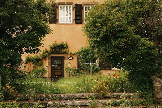 Secret entrance... Tranquil Scene Enjoying Life Found On The Roll My Favorite Photo Travel Architecture Vscocam Germany🇩🇪 Travel Destinations Tourist Attraction  Nature Residential Building Façade Rural Scene Beauty In Nature My Favorite Place