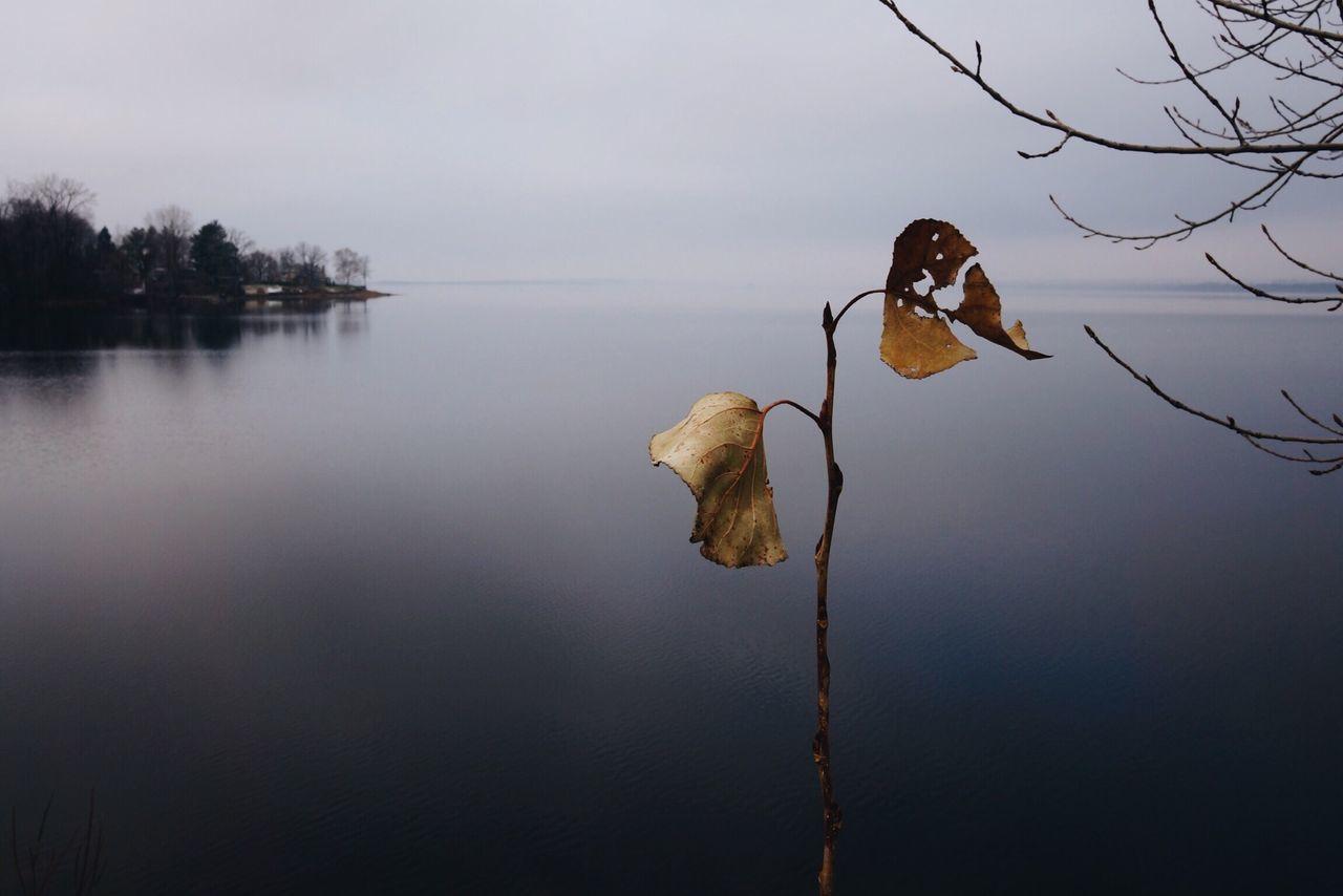 Nature Stillness Lake