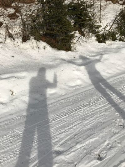 Shadow Snow Winter Focus On Shadow Sunlight Cold Temperature Nature Shades Of Winter
