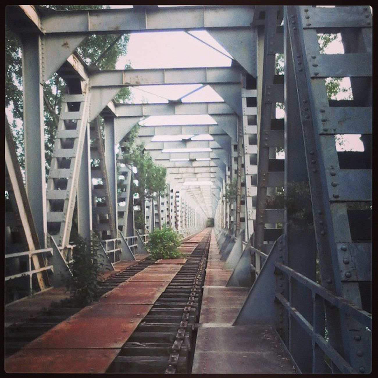 Bridge Oldbridge Old Exferrovia infinity way long beautiful