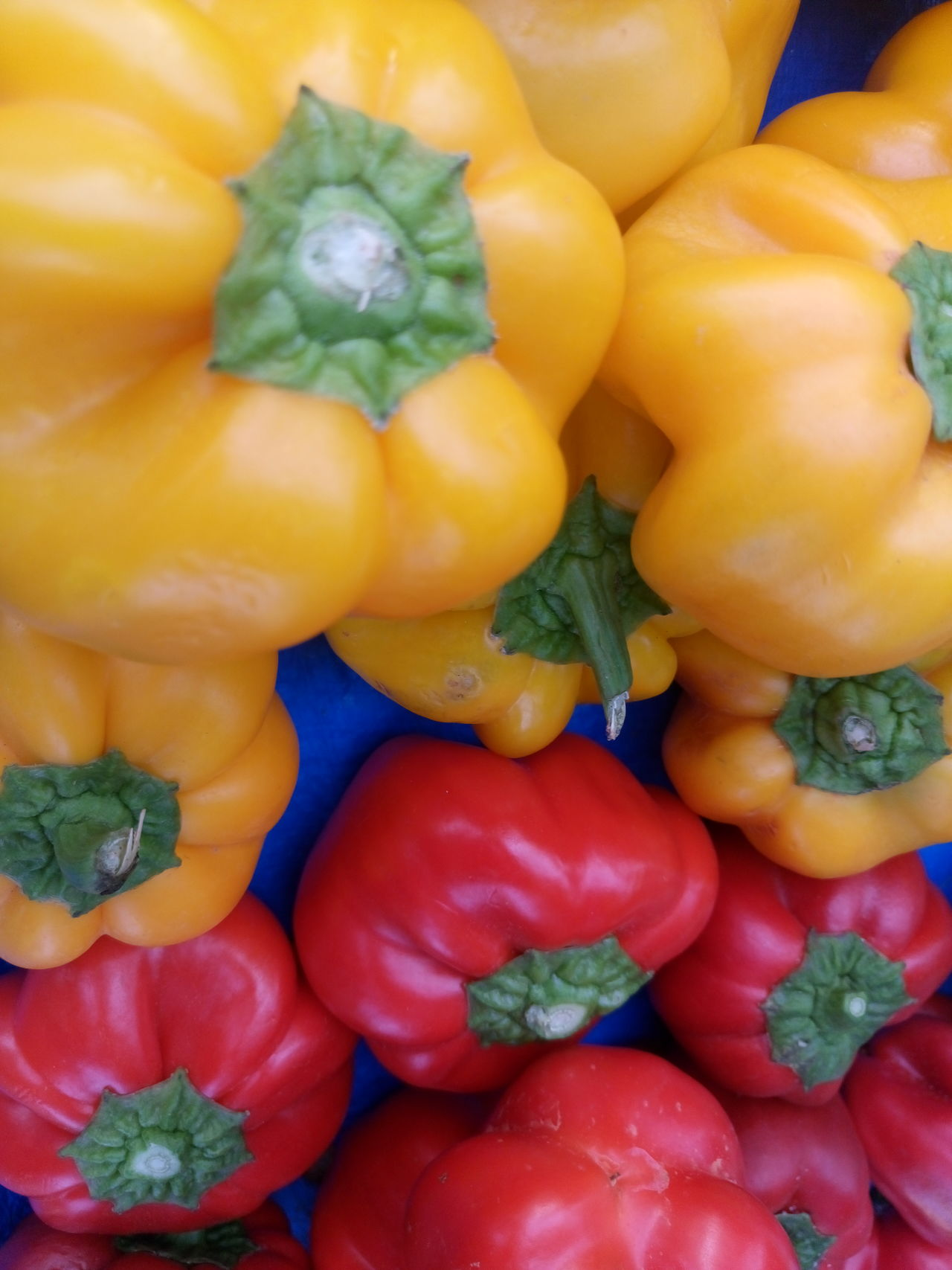 Backgrounds Bell Pepper Close-up Day Food Food And Drink Freshness Fruit Full Frame Healthy Eating Multi Colored No People Red Bell Pepper Variation Vegetable Vegetable Market Yellow Yellow Bell Pepper
