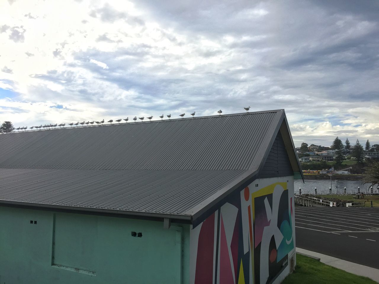 Seagulls lining up on the roof Building Exterior Architecture Cloud - Sky Roof Seagulls Lining Up Graffiti Wall Art