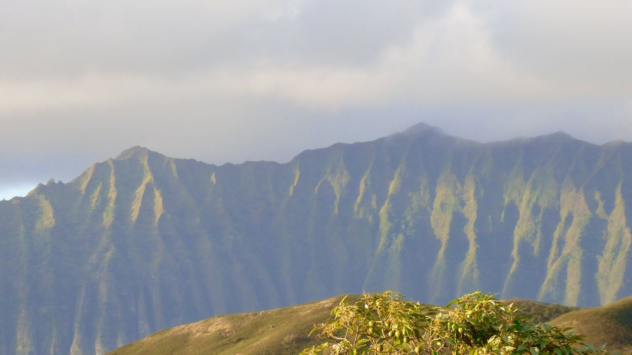 Mountains behind our house! Ko'olaus Kailua  Oahu Pacific Ocean Hawaii Taking Photos Kalama Aloha! Pacific Surf