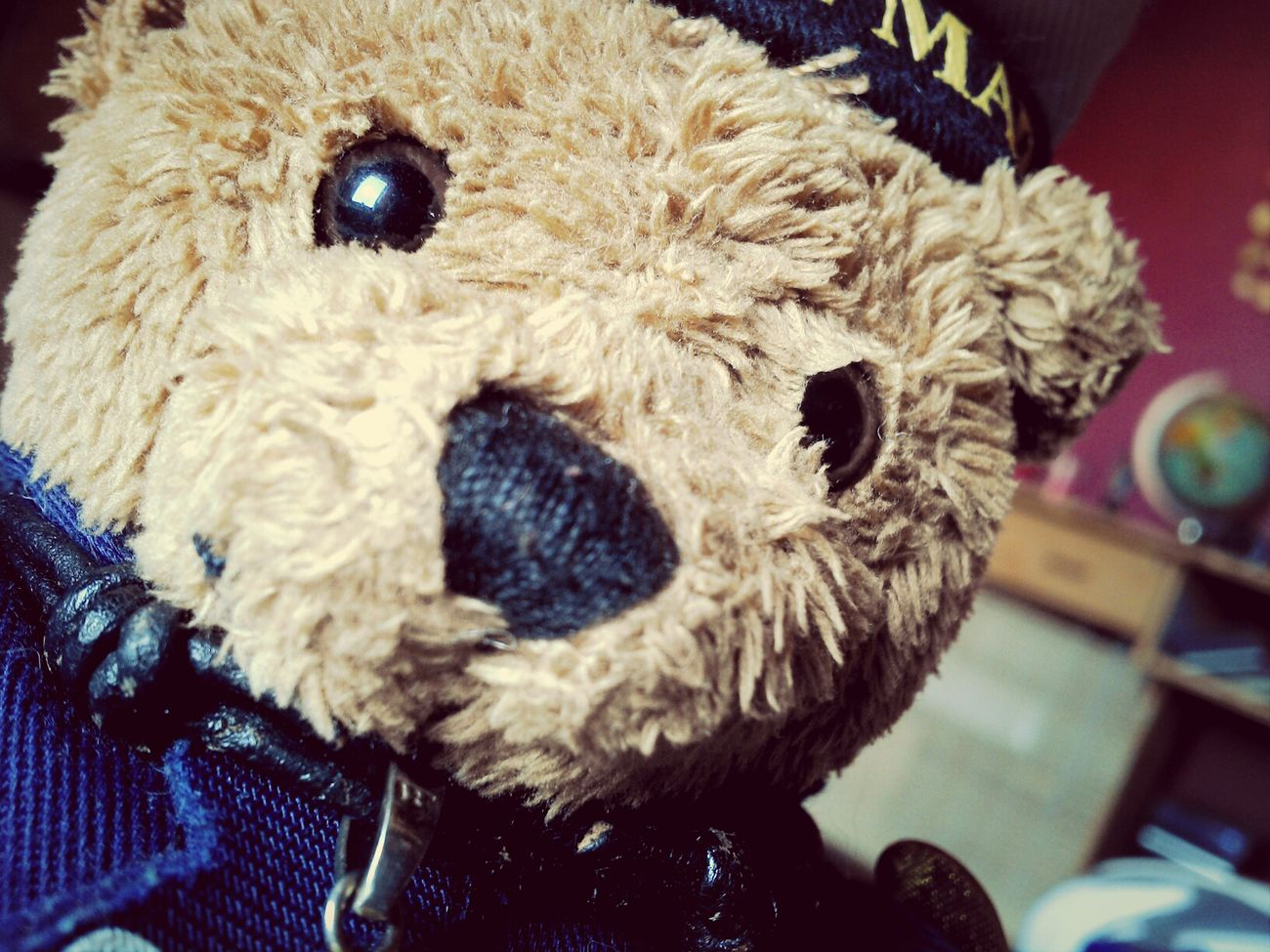 Special Nelson Selfie for the Malephotographerofthemonth contest @tillytallulah NelsonsAdventures Teddy
