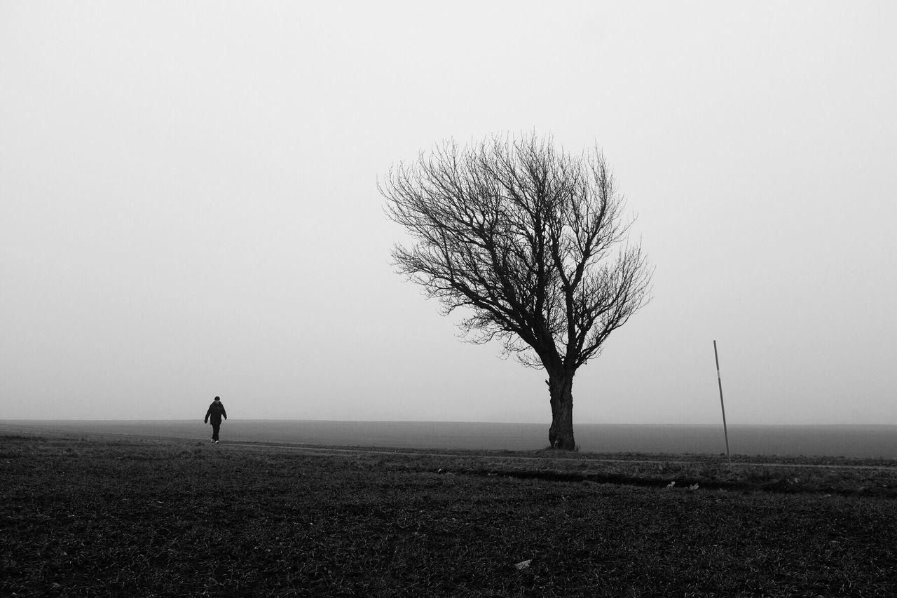 Tree Tranquility Landscape One Person Fog Black And White Street Photography Monochrome Winter Bw_collection