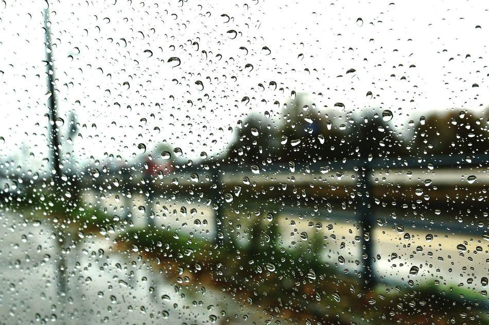 Rainy Rainy Days Drops Window Transparent Train Nature Fieldofdepth First Eyeem Photo