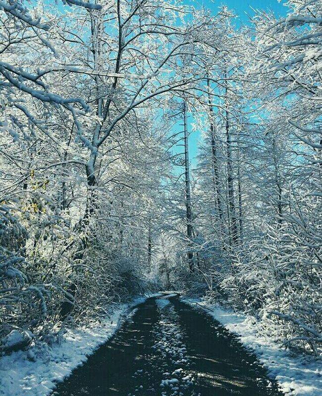 Snow ❄ No Filter I Love It ❤ Taking Photos Amazing Gmorning🌞 Beautiful