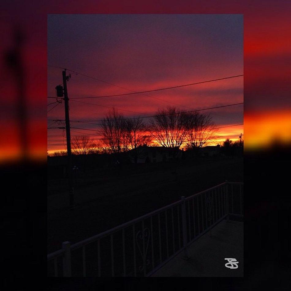 - ☸wнo wιll мaĸe мe ғιgнт? drag мe oυт alιve ѕave мe ғroм мyѕelғ, donт leт мe drown.☸ ☰☰☰☰☰☰☰☰☰☰☰☰☰☰☰☰☰ [ BringMeToTheHorizon Drown Myphoto Photography Trees Nofliterneeded Pictures Live Life Sky Colors Lyrics Like ] ☰☰☰☰☰☰☰☰☰☰☰☰☰☰☰☰☰