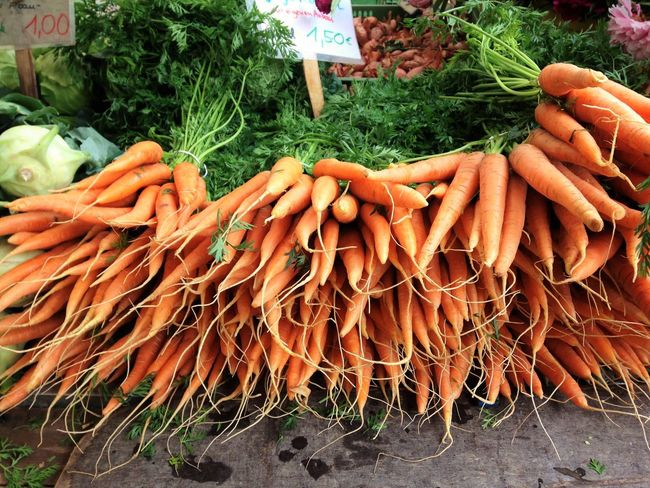 Market in Freiburg. 🌀🐇 Abundance Business Carrot Day Display Food Food And Drink For Sale Freshness Healthy Eating In A Row Large Group Of Objects Market Market Stall Orange Color Outdoors Person Retail  Retail Display Root Root Vegetable Senior Adult Stem Variation Vegetable
