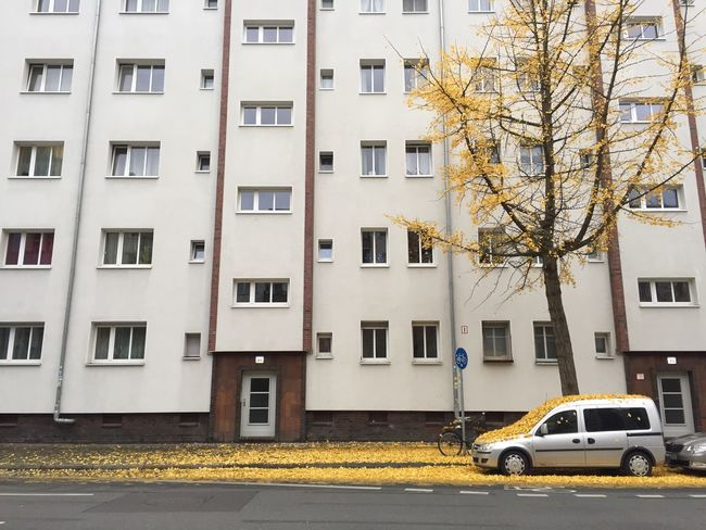 Apartment Architecture Autumn Bare Tree Building Car City City Life City Street Day In Front Of Land Vehicle Mode Of Transport Outdoors Parked Parking Residential Building Residential Structure Road Roadside Stationary Street Transportation Window