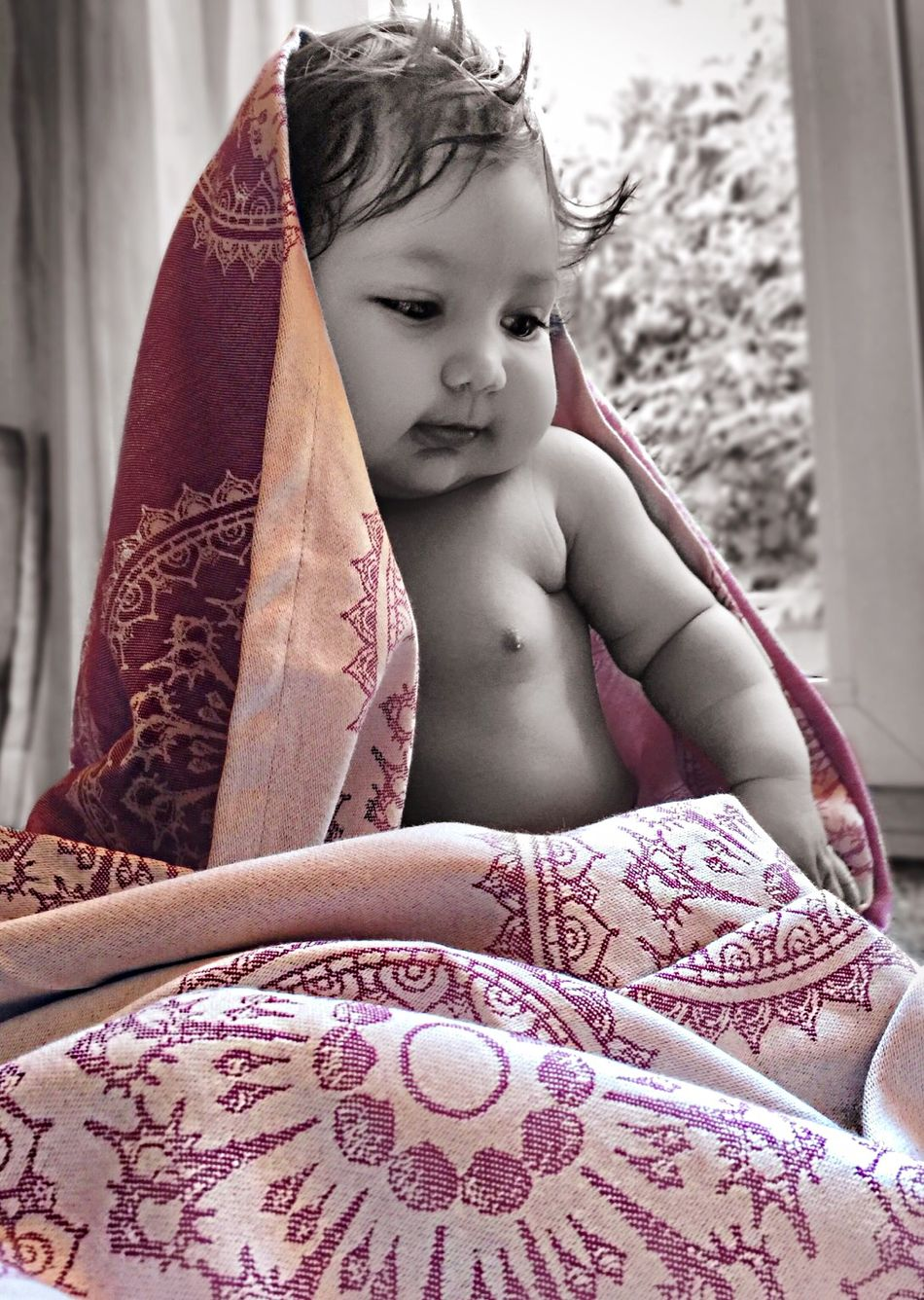 Babywearing Baby Babygirl My Baby Ring Sling Lenny Lamb Blackandwhite IPhoneography Iphone 6 Plus