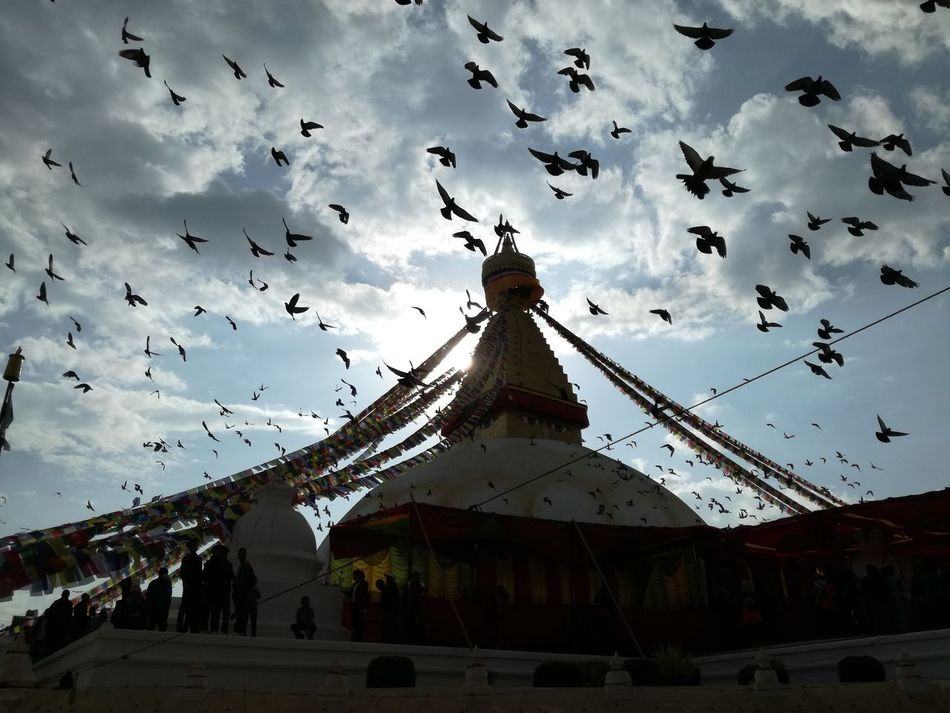So beautiful 💚 Architecture Birds Flying Bodnath Boudhanath Boudhatemple Budhism Building Exterior Built Structure Culture And Tradition Day Exceptional Photography Flag I Love Nepal Kathmandu Large Group Of Animals Large Group Of People Low Angle View Meditation Place My Art Nepal No Edits No Filters Outdoors Stupa