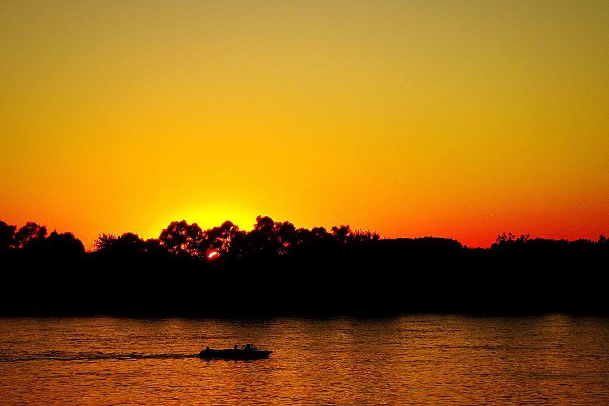 Rhine River Riverside Sunset Sun Orange Sky Red Sky Boat Water Trees Light And Shadow Shadow Clear Sky Nature GernsheimGermany