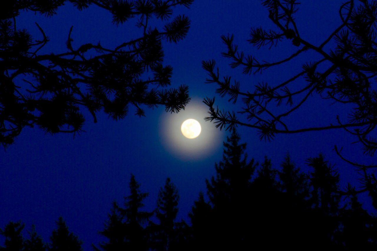 Moon Full Moon Moonlight Nature Tranquil Scene