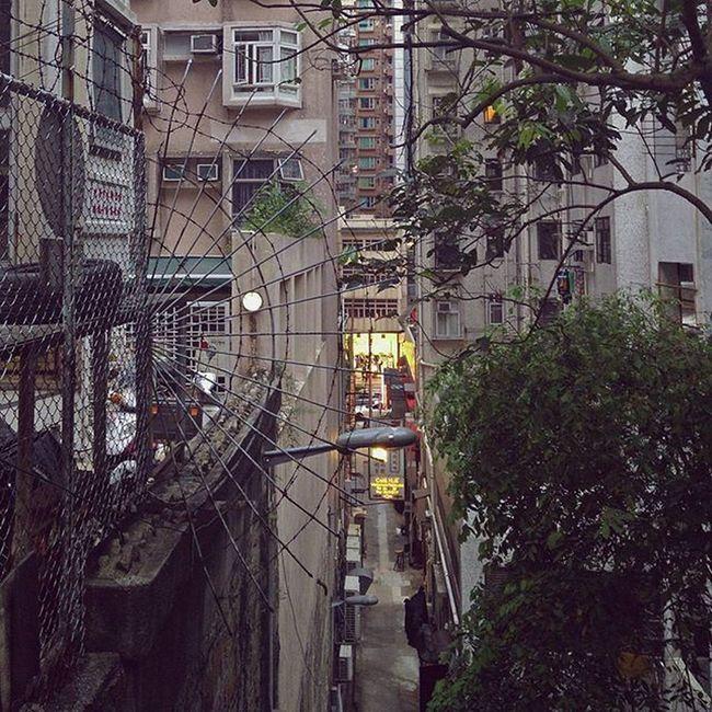☸⚙💡 Spikes Web Alleyway Buildings Everycrookandnanny Northpoint Hkig Instameethk EyeEem Oneplusone Photography Art