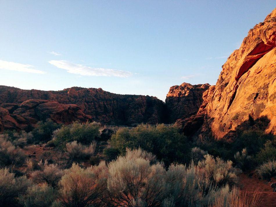Beautiful stock photos of colorado, Arid Climate, Beauty In Nature, Bush, Cloud
