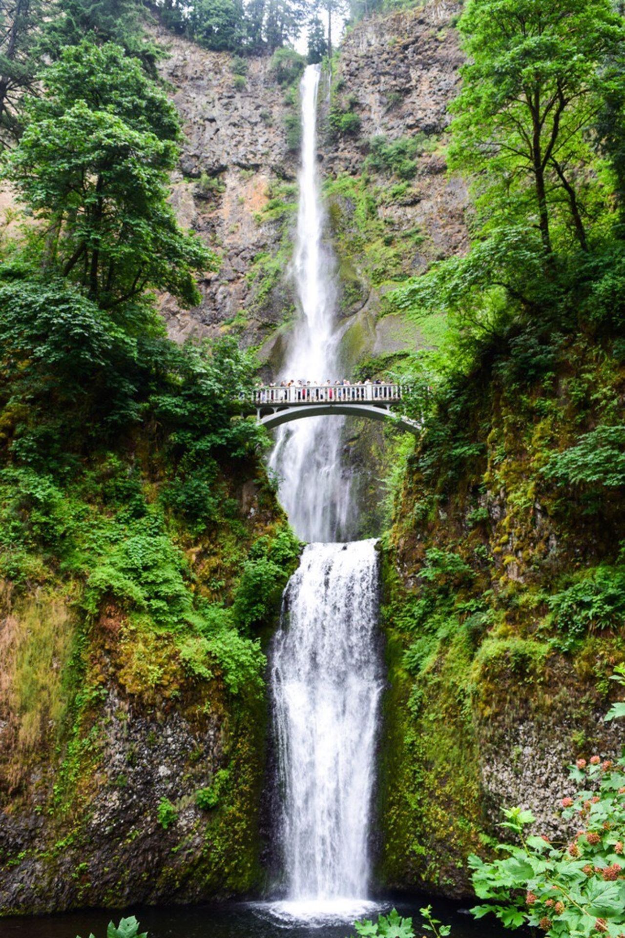 Multnomah Falls  Oregon Columbia River Gorge Waterfall Water Beauty In Nature Nature Motion Outdoors
