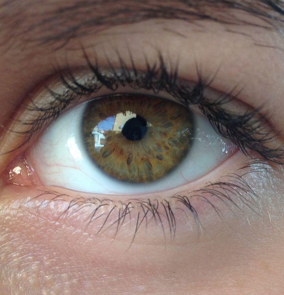 👁 Human Eye Eyesight Eyeball Looking At Camera Eyelash Iris - Eye Human Body Part Real People One Person Sensory Perception Unrecognizable Person Close-up Iris Indoors  Day People First Eyeem Photo