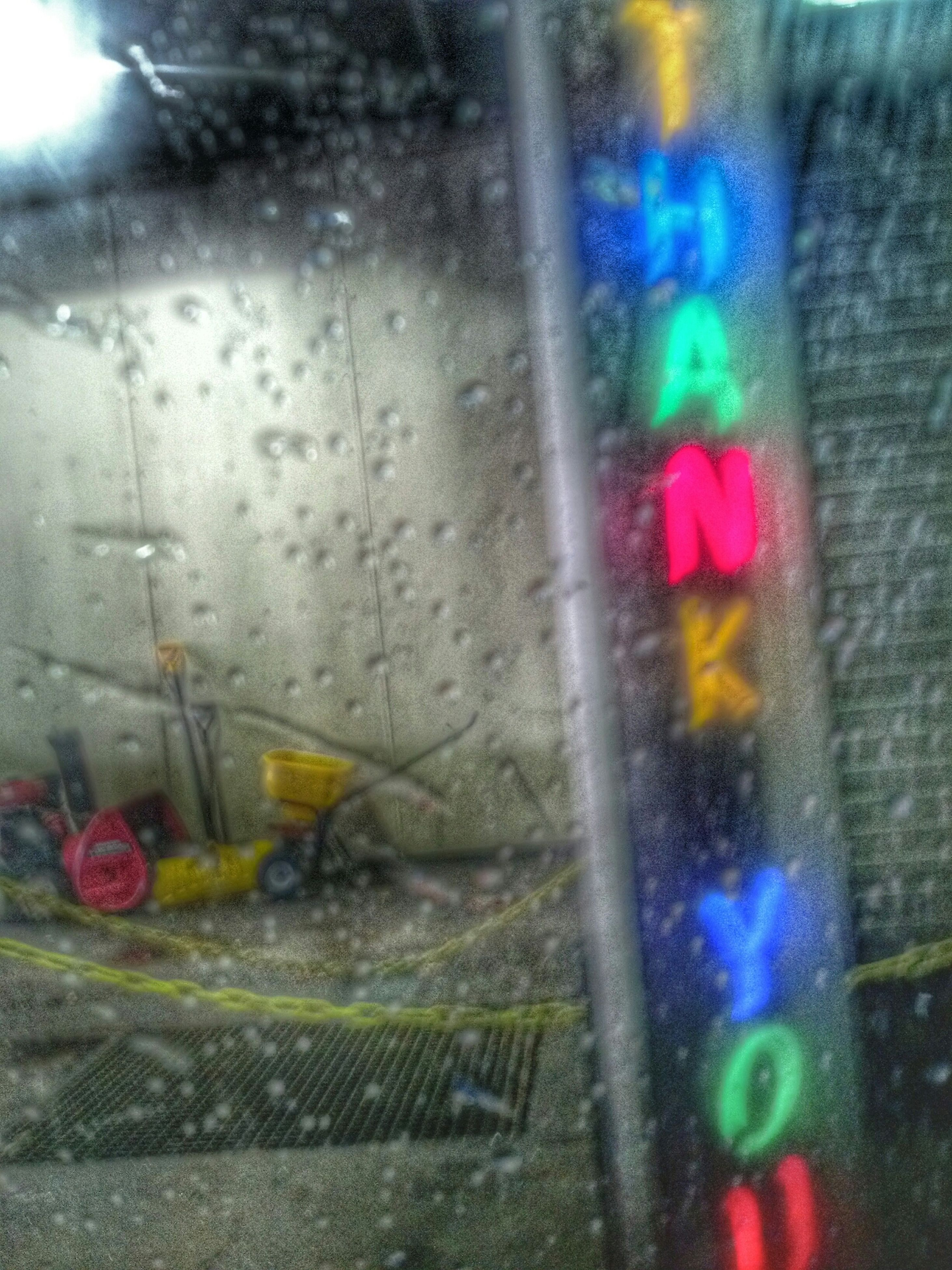 glass - material, window, transparent, flower, wet, transportation, red, indoors, car, fragility, rain, drop, multi colored, land vehicle, close-up, focus on foreground, weather, street, mode of transport, no people