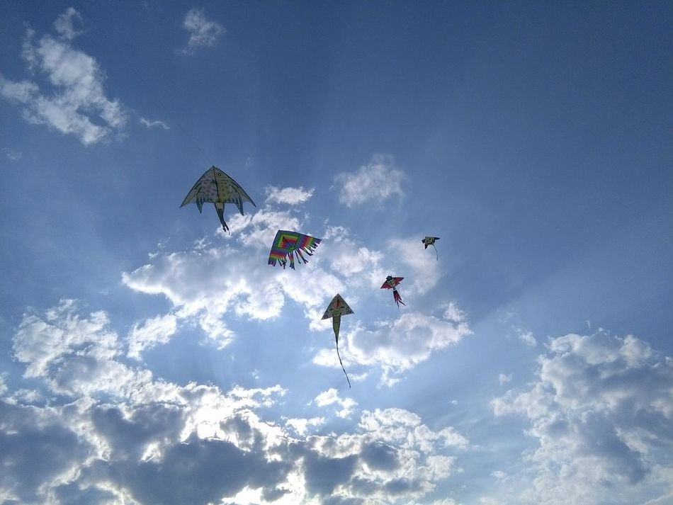 Flock of kites Flying Airshow Formation Flying Cloud - Sky
