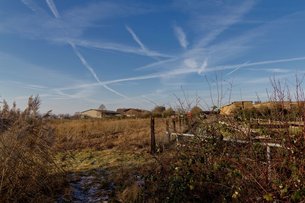 Chemtrails Autumn Blue Sky Chemical Chemtrails Colors Of Nature Fields Landscape Outdoors Rural Scene Sky Sky And Clouds