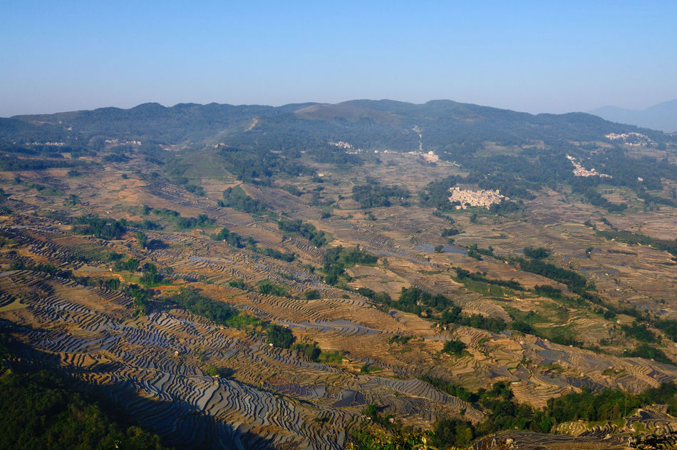 Aerial View China Day Exploring Farming Forest Geology High Angle View Hill Landscape Lush Foliage Mountain Mountain Range Physical Geography Step Farming Stepfarming Terraced Field Terraced Rice Fields