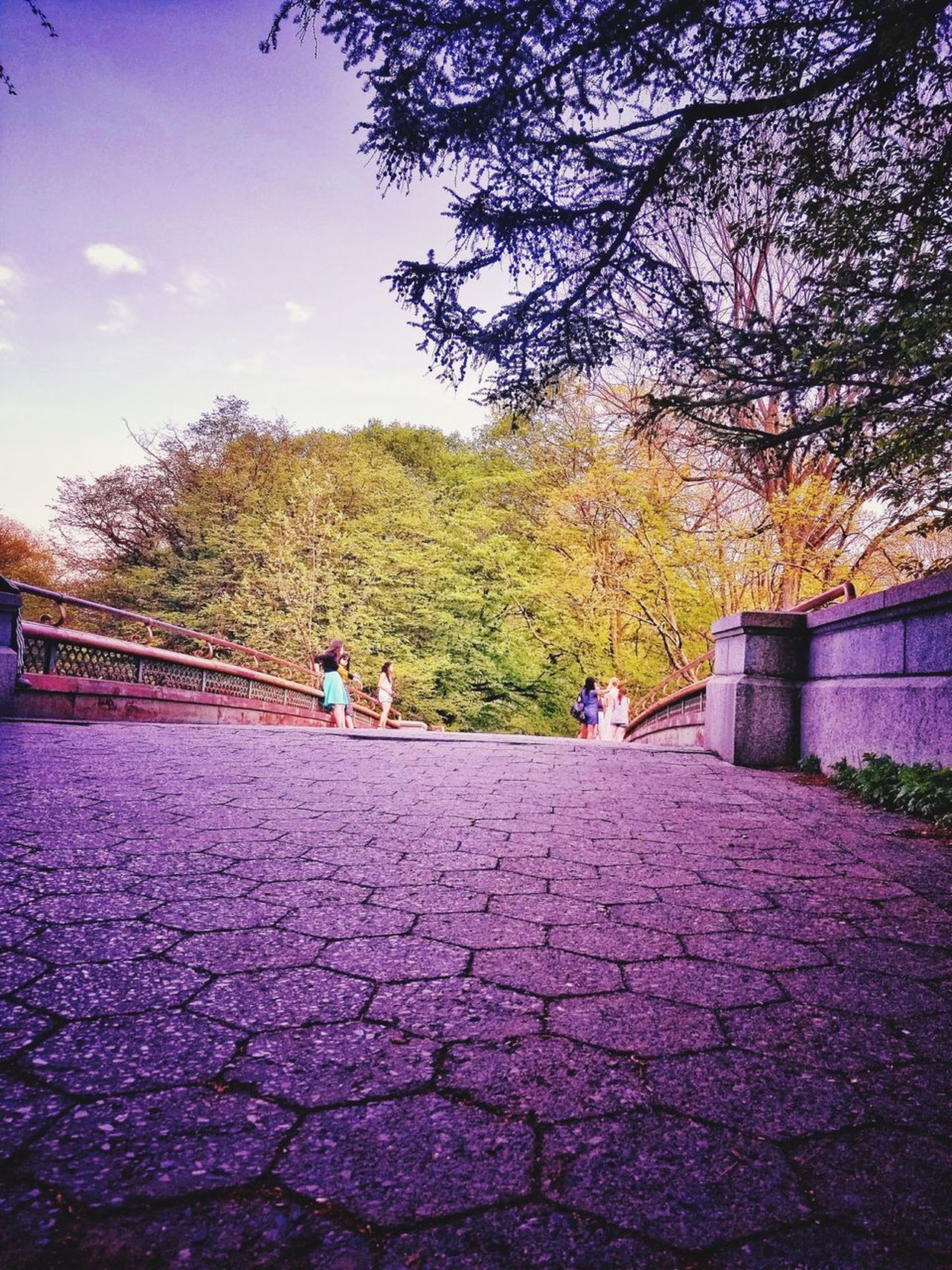 Prospect Park Bridge Brooklyn New York City Sky Nature Real People Outdoors People Community Street Photography