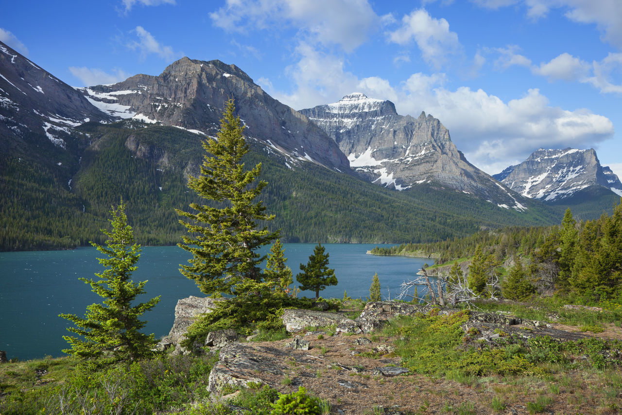 Saint Mary lake in Glacier National Park Clouds And Sky Lake Landscape Mountains Pine Tree Rocks Saint Mary Lake Scenic View Snowcapped Mountain Sunlight Trees Turquoise Color Of Water USA West