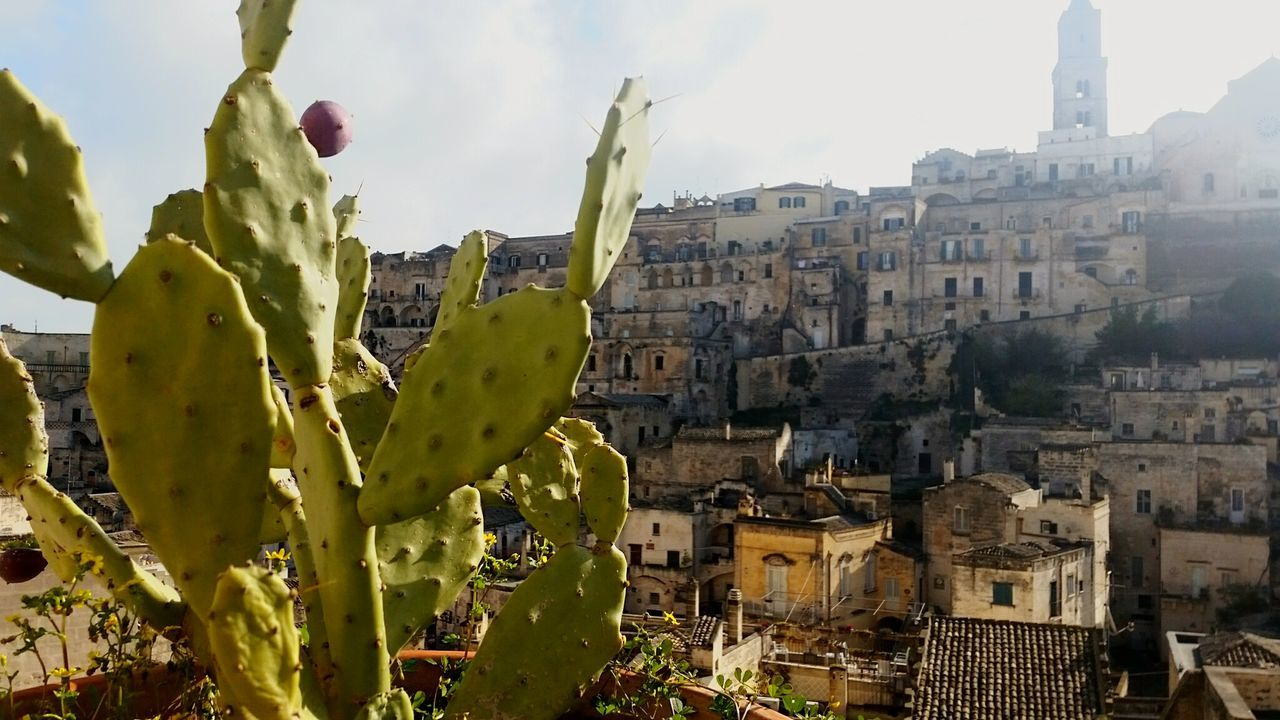 Matera Italy Showcase April Places I've Been Today Cityscapes Landscape_Collection Landscape_photography City Skyline Tourism EyeEm Best Shots Eye4photography  Stone Seeing The Sights Matera Street Photography