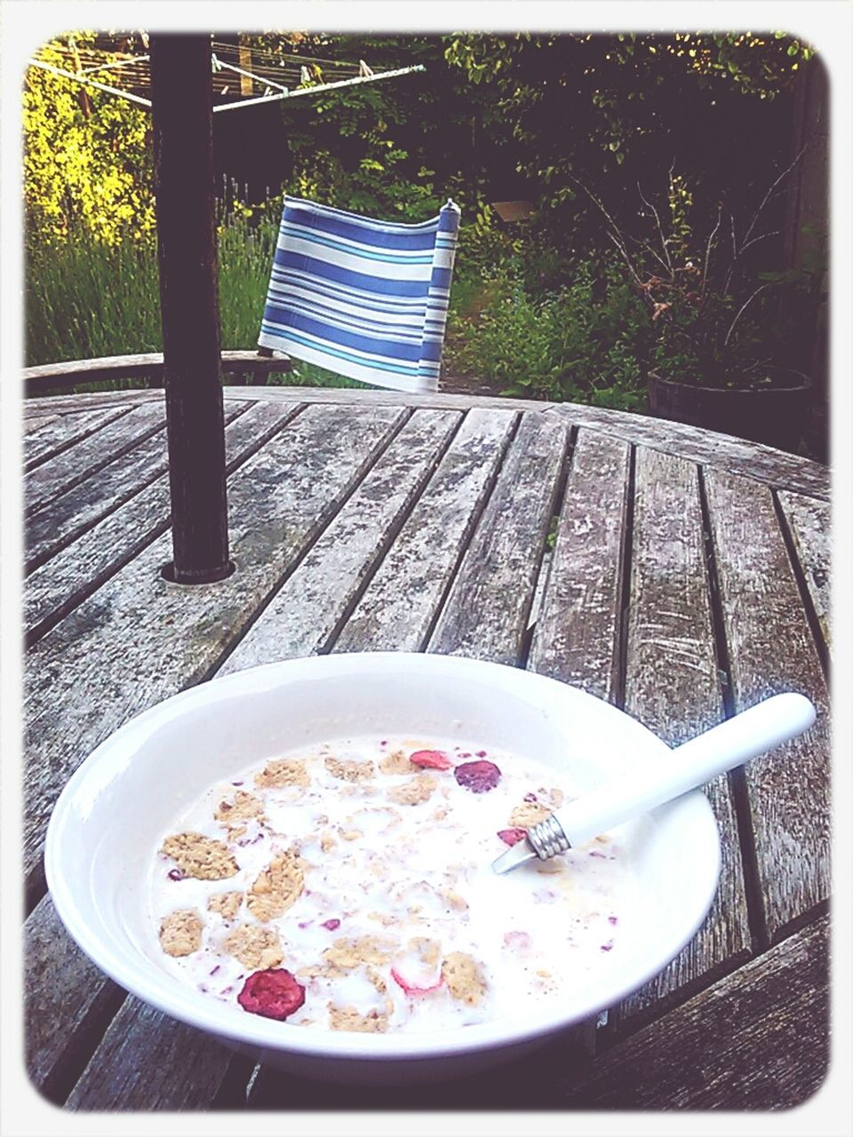 food and drink, food, table, healthy eating, breakfast, bowl, freshness, plate, no people, day, outdoors, drink, tree, ready-to-eat, close-up