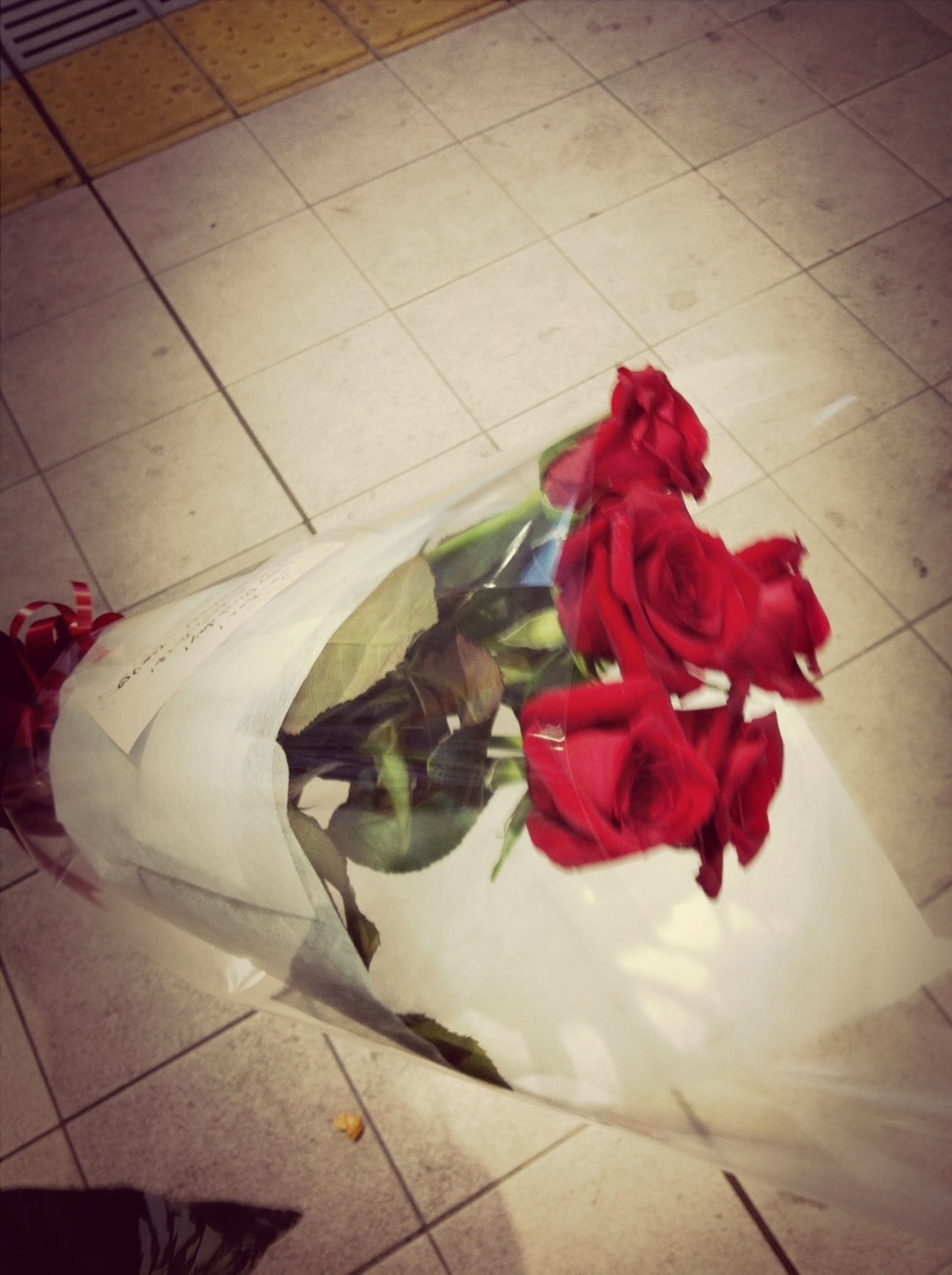 flower, petal, high angle view, indoors, tiled floor, red, freshness, fragility, rose - flower, sunlight, flower head, shadow, flooring, day, no people, white color, tile, vase, pink color, decoration