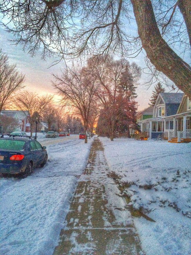 On my way to work this morning. Early Morning Change Of Seasons Sunrise Walking Around