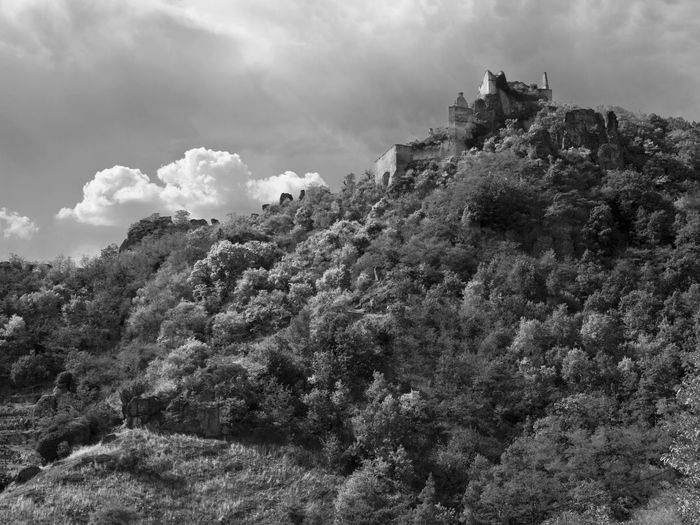 Austria Black & White Ancient Civilization Architecture Beauty In Nature Blackandwhite Citadel Cloud - Sky Day Dürnstein Forest Fortress History Low Angle View Majestic Middle Ages Mountain Nature No People Outdoors Point Of View Rock - Object Scenics Sky Tree