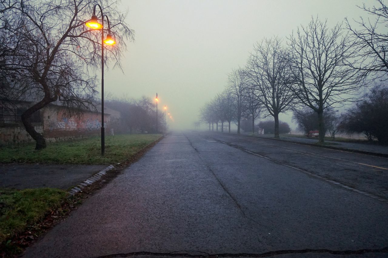 Empty Foggy Foggymorning Mystery Outdoors Road Street Street Light Trees Vac First Eyeem Photo