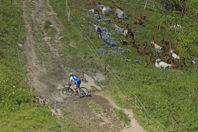 Gigathlon - Crans-Montana - Schweiz Bicycle Cycling Dirt Road Grass Green Color Mountain Mountainbike Outdoors Tourism Tranquil Scene Tranquility Transportation