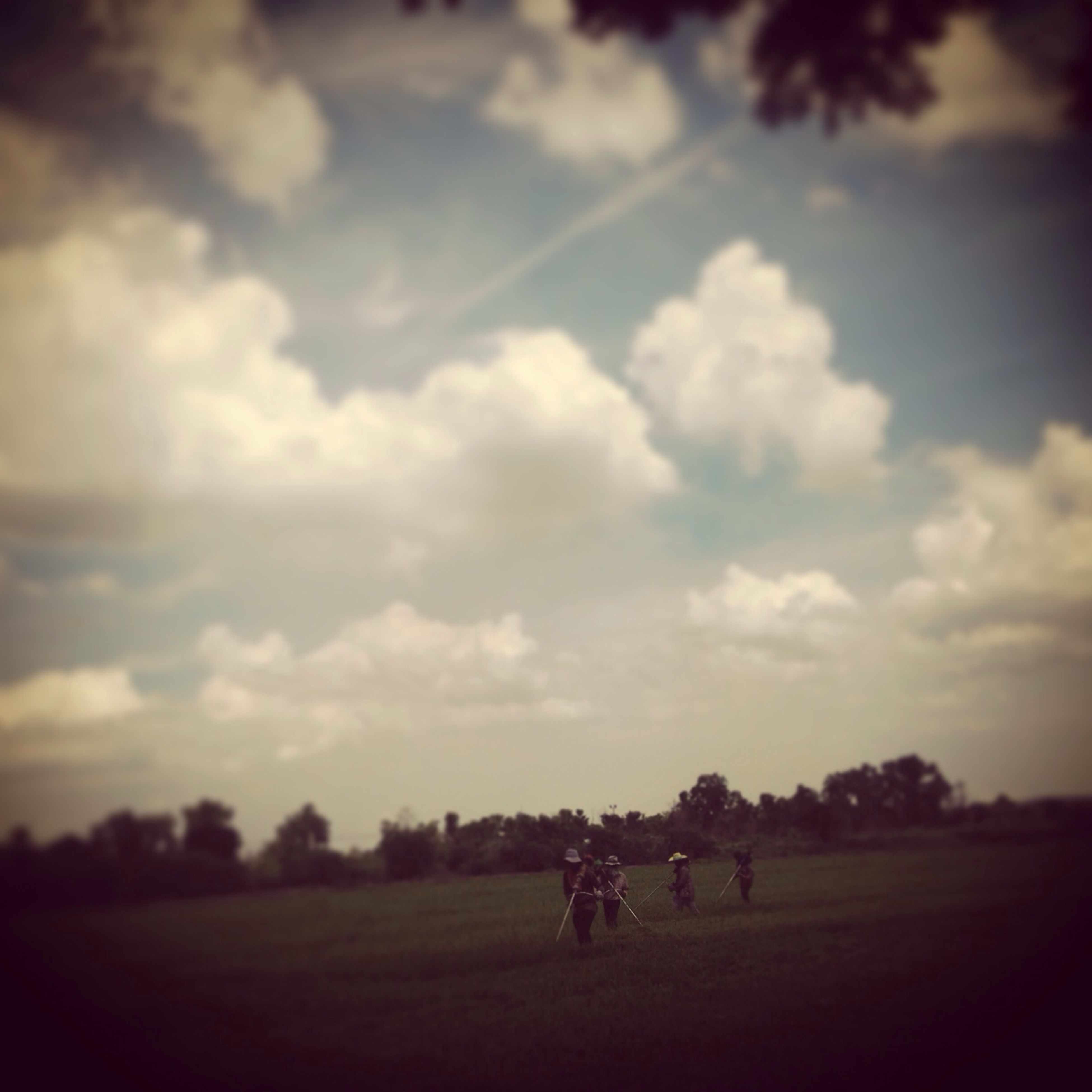 grass, sky, field, leisure activity, lifestyles, tree, men, cloud - sky, landscape, grassy, nature, tranquil scene, tranquility, person, togetherness, beauty in nature, scenics, cloud