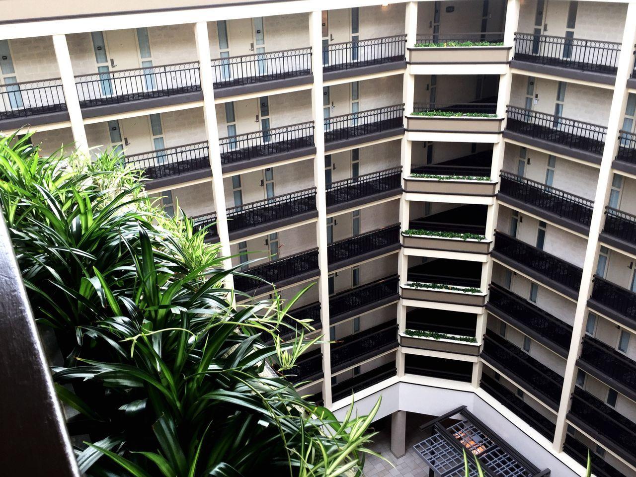 The Architect - 2017 EyeEm Awards Urban4 Architecture Built Structure Balcony Indoors