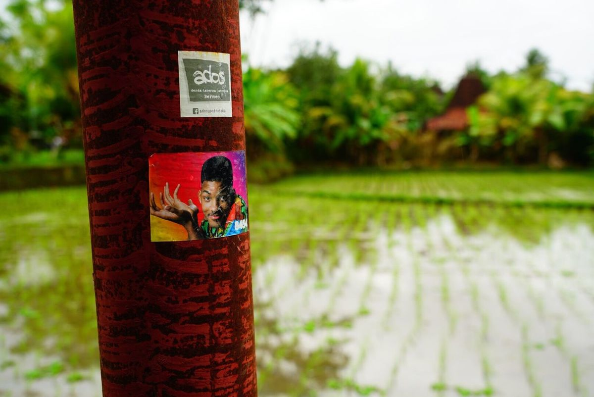 Focus On Foreground Human Representation Day Communication No People Water Red Outdoors Close-up Tree Nature Will Smith Rice Paddy Travel Bali INDONESIA