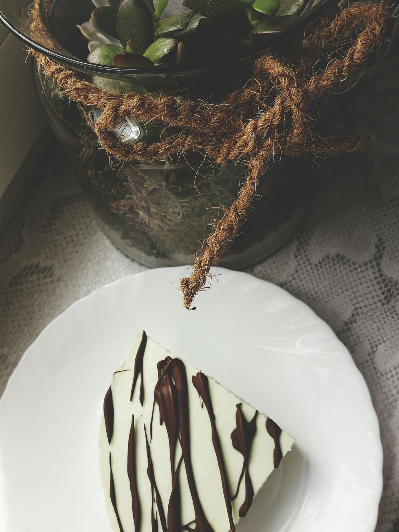 Food Sweet Food Healthy Eating Goodday Tastyfood Succulents Flowers Chocolate♡ First Eyeem Photo Cake Loveit Happyday Fitfood Dessert Decoration Freshfood Beauty In Nature Yummy 😚