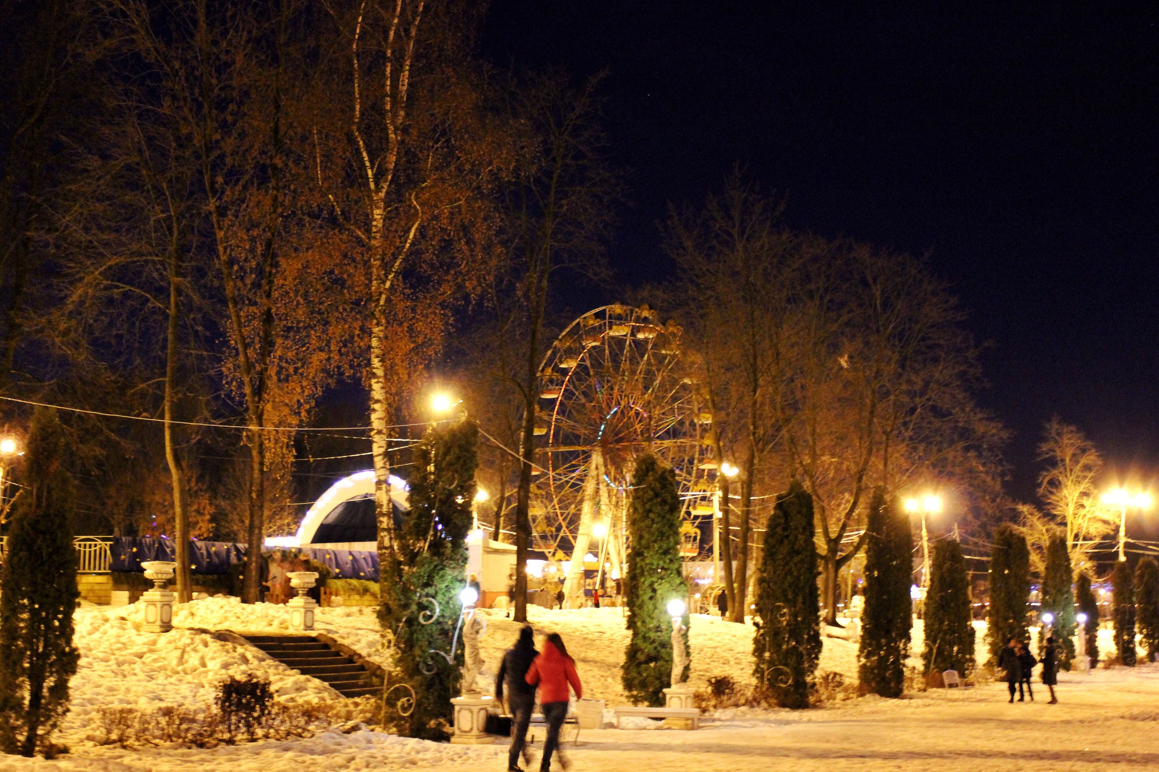 night, illuminated, street light, christmas, christmas decoration, tree, christmas lights, outdoors, celebration, people, city, christmas market, sky, architecture, christmas tree, adults only, adult, city gate